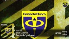 Brian Cameron - Serotonin Syndrome Original Mix