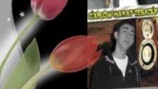 Çaresizim Anamdamar Efecan Cixflow Hayat Tesadüf Güneydoğu Familya