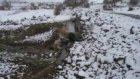 Arguvan Gürge Köy Resimleri