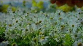 Yasemin Göksu - Elveda Efkar - (Umut Film Müziği)
