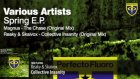 various artists - spring ep reaky  skaivox - collective ınsanity original mix