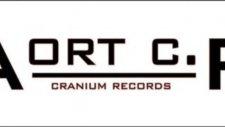 Dj can gunes hot summer live mix (pro aort c r)