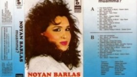 Noyan Barlas - Sevsinler Seni