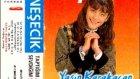 Zara Nesecik Sensin Beni Yasatan 1989 Hamle Müzik)