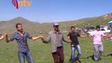 Sultanpınar Köyünde Halay Görüntüleri