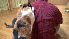 Sahibinin Sırtını Kaşıyan Kedi