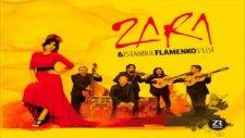 Zara - Su Karşıki Dağda / Zara İstanbul Flamenko 5lisi (2012) Full Albüm