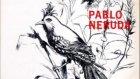 Angel Parra  Pablo Neruda 1966 Arte De Pajaros