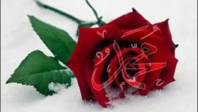 Abdurrahman Önül - Sevdim Seni Mabuduma