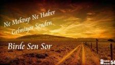 Cevdet Bağca - Birde Sen Sor