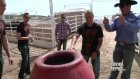 the ufc in calgary fighters in a barrel