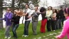 Tren Halayı (Penguen Dansı)