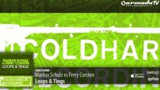 Markus Schulz Vs Ferry Corsten - Loops  Tings Extended Mix