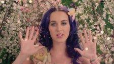 Katy Perry Wide Awake HD