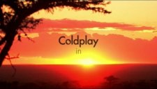 Coldplay Paradise