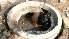 Hindistan'da kanalizasyon temizliği