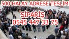 grup seyran dıle dıle  -500 Halay Mp3 İçin Ara :05454473375