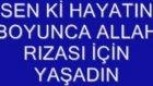 gavsım'a