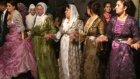 Goyi Düğünü Antalya Pınarlı Koma Şevak
