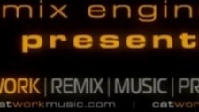 Catwork Remix Engineers Ft Sharon Philips Like This Like That
