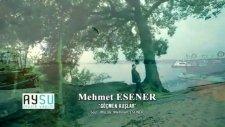 Mehmet Esener Göçmen Kuşlar