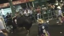 Kadın Rodeocu Boğanın Üstünde Felç Geçirdi!