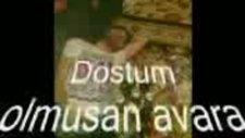 Nurlan İbrahimov Hasan İbrahimov
