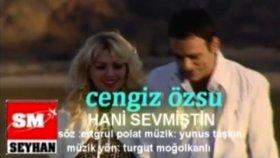 Cengiz Özsu - Hani Sevmiştin
