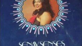 Şenay Şenses - Akşam Oldu Hüzünlendim Long Play