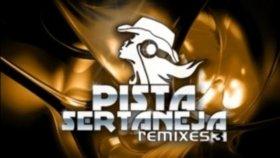 Michel Telo ft. Pitbull - Ai se eu te pego ( Remix )