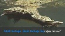 Sumru Parmaksızoğlu - Küçük Kurbağa