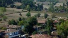 Çamlık Boğaköy