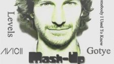 Avicii Ft Gotye - Somebody I Used To Know - Levels ( Mash-up )