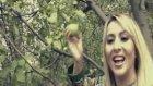 Ayşegül Pınar - Amasya Elması