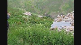 Ayşenur Kolivar - Yaylalar