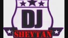 Dj Sheytan - The Best Of The Year 2013 R-Mix