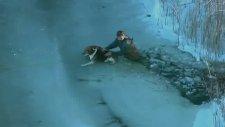 Buza sıkışan köpek kurtarıldı