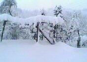 Soğukpınar Köyünde Bir Kış Günü 5