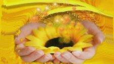 Orhan Gencebay - Güneşimsin