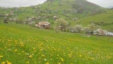 Köyümün Yağmurları