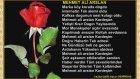 MEHMET ALİ ARSLAN