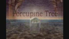 Porcupine Tree - Mute