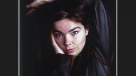 Björk - Verandi