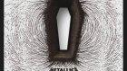 Metallica - Black Squirrel