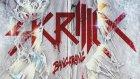 Skrillex - Breakin A Sweat