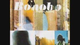 Bonobo - Shadowtricks