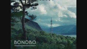 Bonobo - Stay The Same
