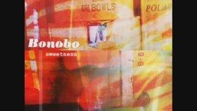 Bonobo - Super 8