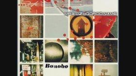 Bonobo - Wayward Bob