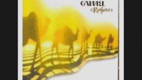Camel - Lawrence